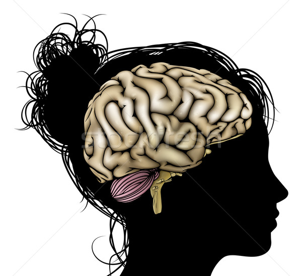 Woman silhouette brain Stock photo © Krisdog