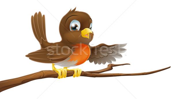 Robin bird on branch pointing Stock photo © Krisdog