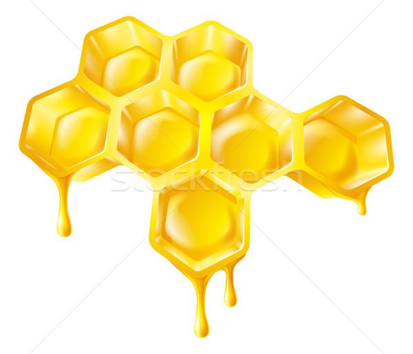 Plaster miodu miodu ilustracja pszczół domu Zdjęcia stock © Krisdog