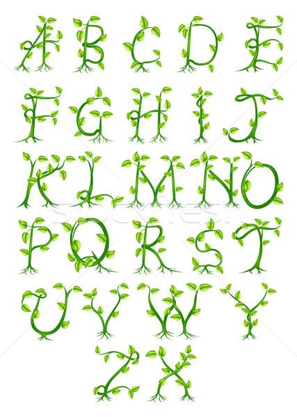 Impianto alfabeto lettere decorativo up Foto d'archivio © Krisdog