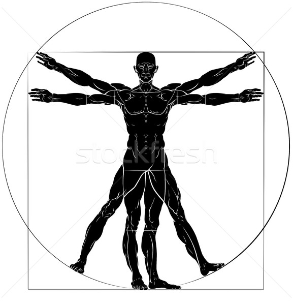 Vitruvian Man Da Vinci Style Figure Stock photo © Krisdog