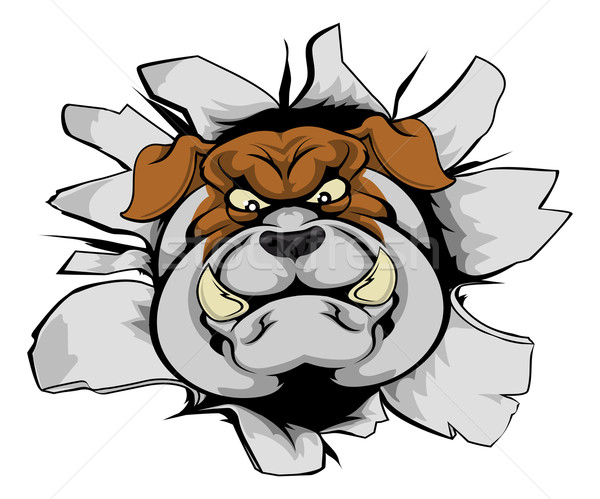 Bulldog mascot smashing out Stock photo © Krisdog
