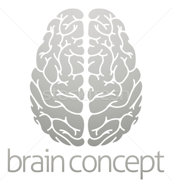 Hhuman brain concept Stock photo © Krisdog