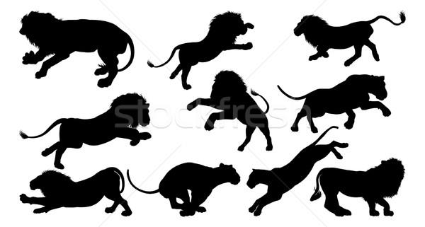 Lion Silhouettes Stock photo © Krisdog