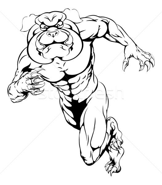 Sprinting bulldog mascot Stock photo © Krisdog