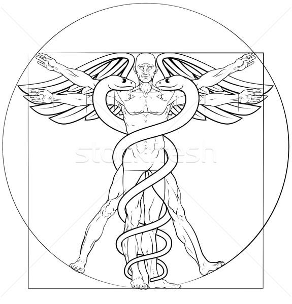 Vitruvian Man Caduceus  Stock photo © Krisdog