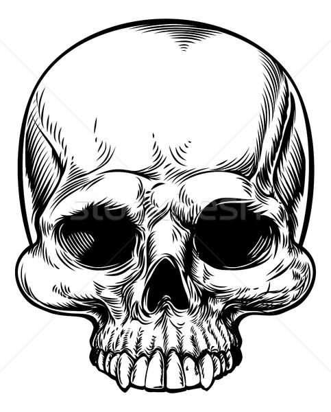 Cráneo vintage retro grabado estilo dibujado a mano Foto stock © Krisdog