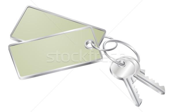 Two keys with blank tag for text Stock photo © Krisdog