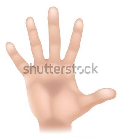 Kéz testrész illusztráció emberi kéz érintés öt Stock fotó © Krisdog
