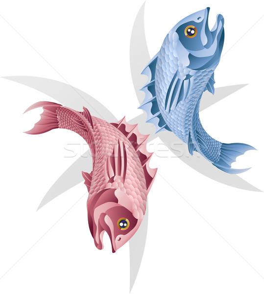 Pisces the fish star sign Stock photo © Krisdog
