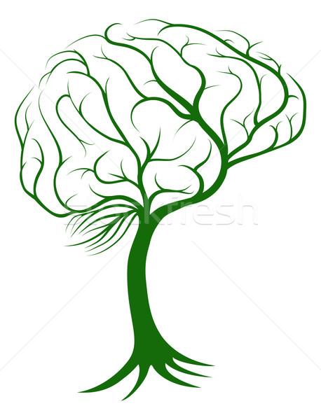 Hersenen boom wortels groeiend vorm medische Stockfoto © Krisdog