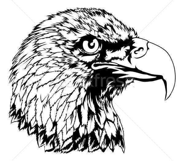 Bald Eagle Head Illustration Stock photo © Krisdog