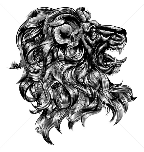 Stock photo: Vintage woodblock style lion