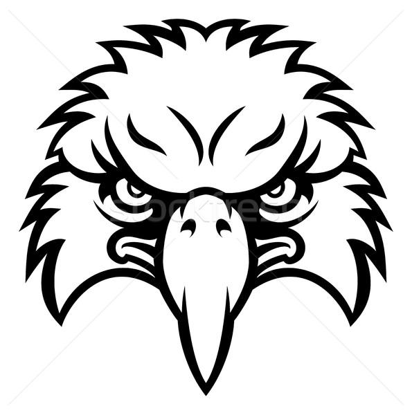 Eagle Face Stock photo © Krisdog