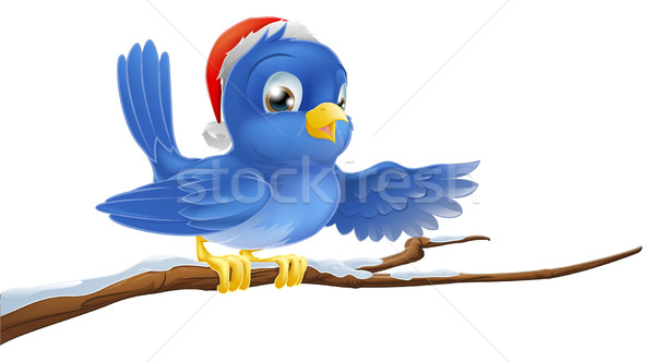 Christmas bluebird pointing Stock photo © Krisdog