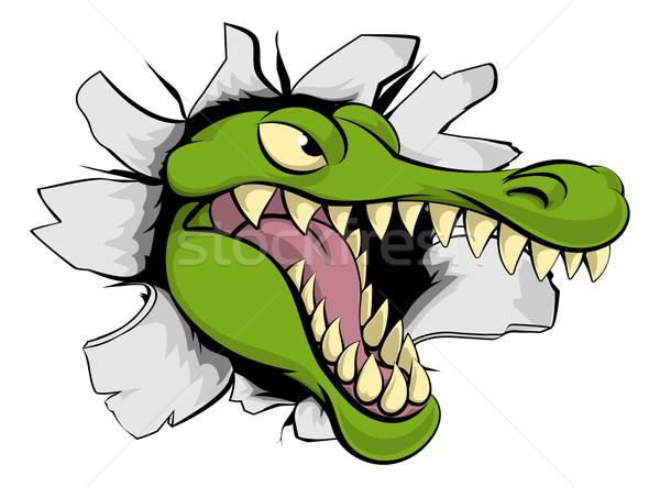 аллигатор крокодила Cartoon талисман голову лице Сток-фото © Krisdog