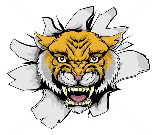 Puma dışarı karikatür maskot kâğıt arka plan Stok fotoğraf © Krisdog