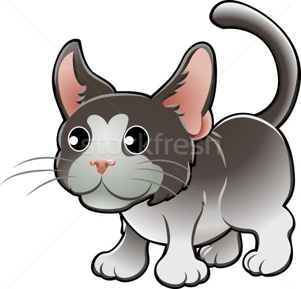 Cute gato doméstico vector ilustración sonrisa ninos Foto stock © Krisdog
