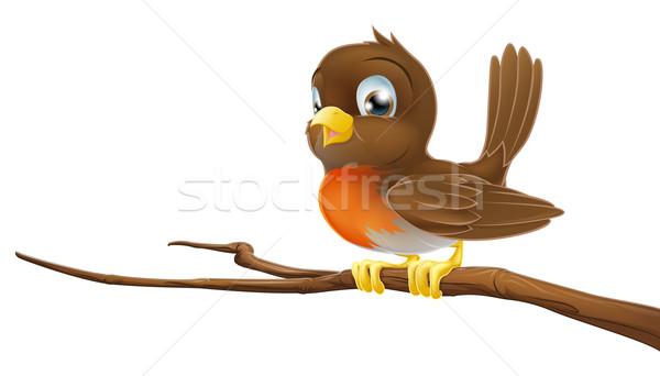 Cute Robin sitting on a tree branch Stock photo © Krisdog