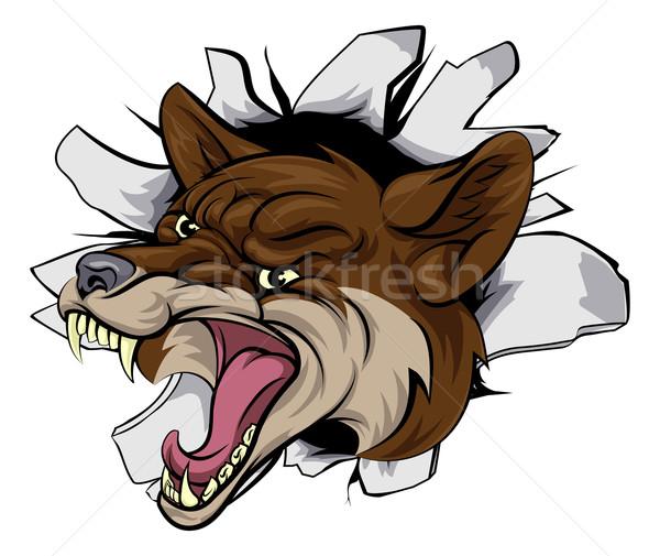 Coyote mascot break out Stock photo © Krisdog