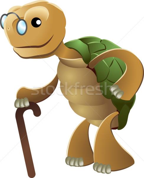 Illusztráció idős teknősbéka visel szemüveg tart Stock fotó © Krisdog