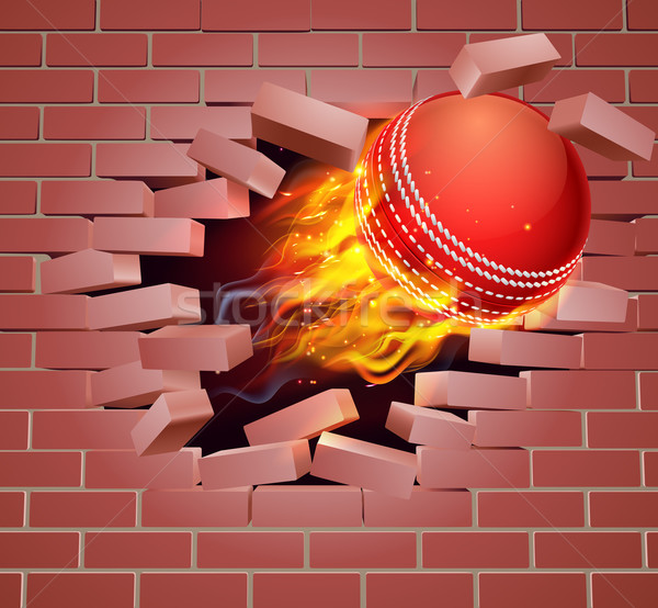 Yanan kriket top tuğla duvar örnek yanan Stok fotoğraf © Krisdog