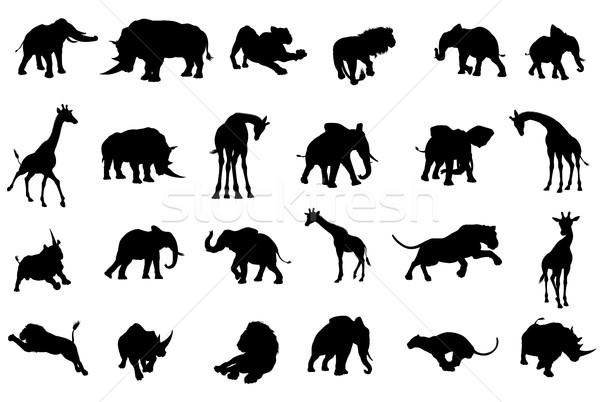 Africano silhuetas safári animal silhueta Foto stock © Krisdog