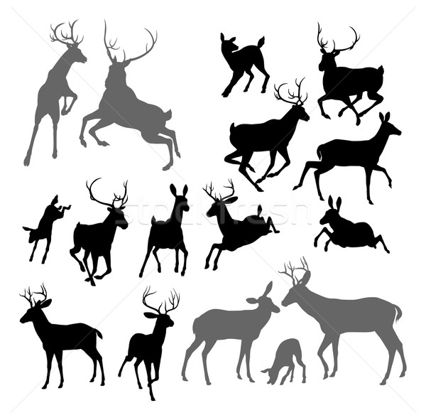 Deer animal silhouettes Stock photo © Krisdog