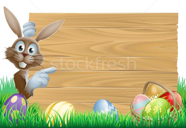 Easter Bunny wijzend teken cartoon Pasen konijn Stockfoto © Krisdog