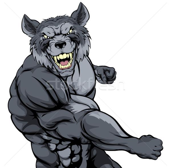 Lobo mascota duro muscular carácter deportes Foto stock © Krisdog