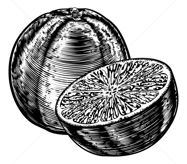 Stock photo: Vintage Woodcut Sliced Orange