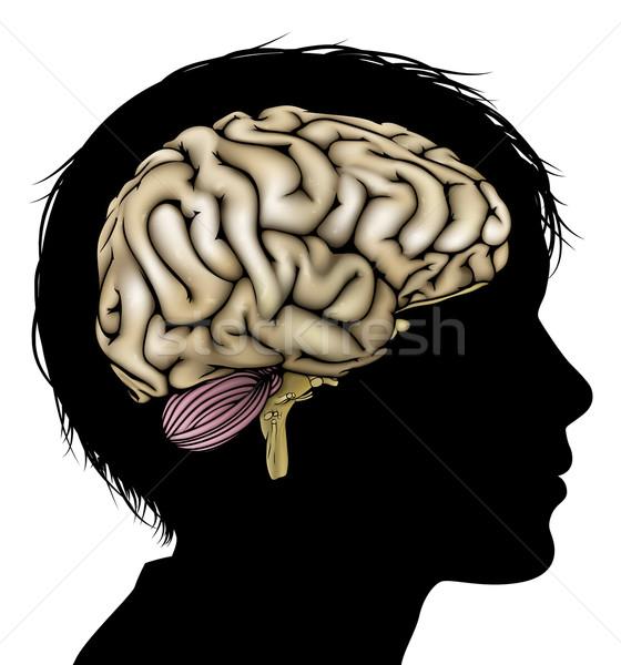 Brain development concept Stock photo © Krisdog