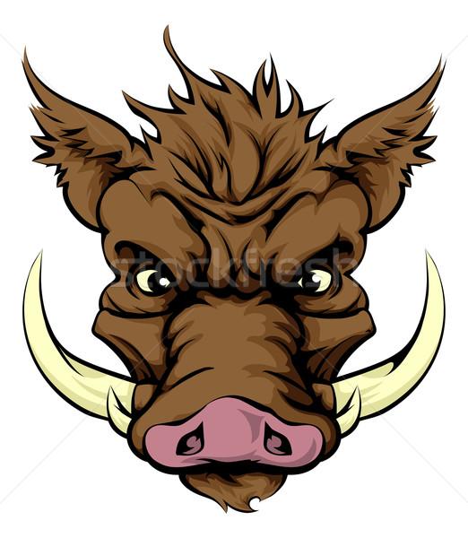 Boar mascot Stock photo © Krisdog