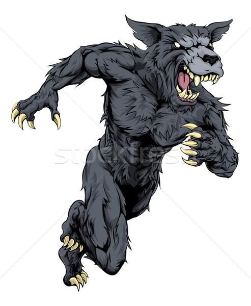 Wolf sports mascot or werewolf running Stock photo © Krisdog