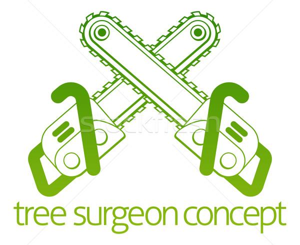 Tree Surgeon Axe Cainsaw Concept Stock photo © Krisdog