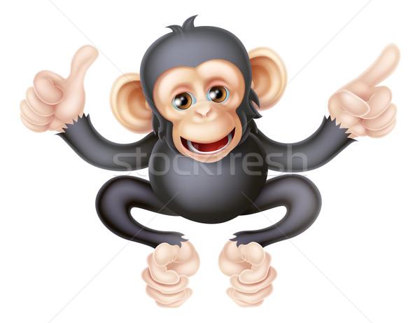 Remek mutat majom csimpánz rajz ahogy Stock fotó © Krisdog