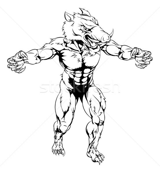 Boar scary sports mascot Stock photo © Krisdog