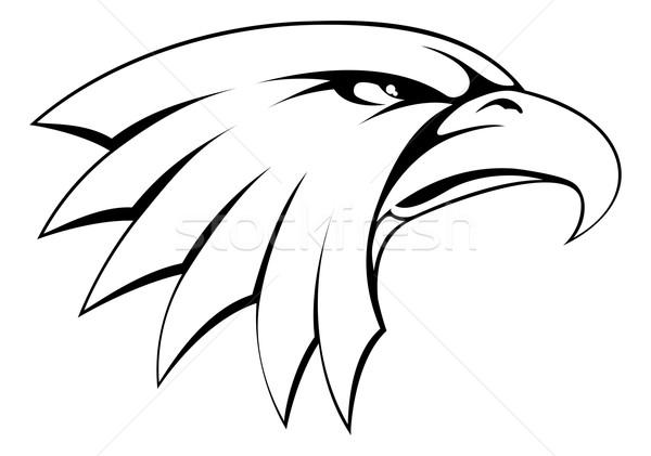 Bald eagle head icon Stock photo © Krisdog