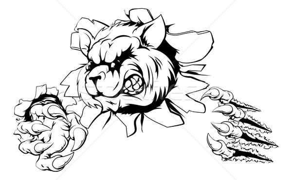 Wasbeer cartoon mascotte dier karakter Stockfoto © Krisdog