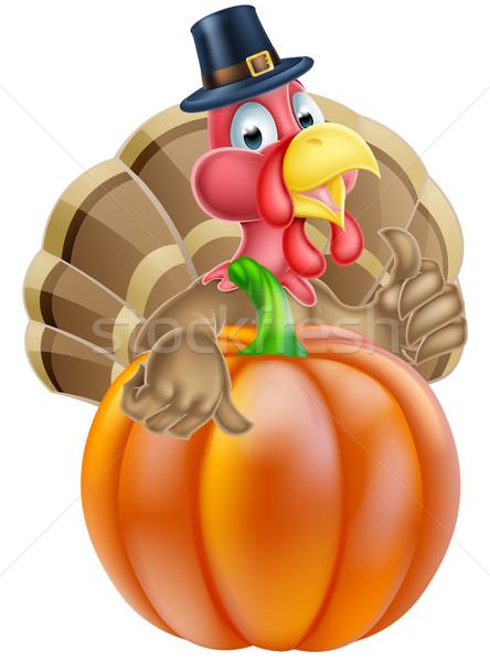 Ringraziamento Turchia zucca cartoon chef Foto d'archivio © Krisdog