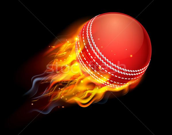 Сток-фото: крикет · мяча · огня · пылающий · Flying · воздуха