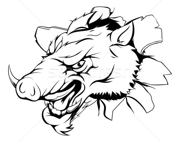 кабан иллюстрация талисман характер лице спорт Сток-фото © Krisdog