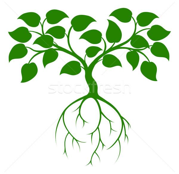 緑の木 実例 グラフィック 長い 根 ツリー ストックフォト © Krisdog