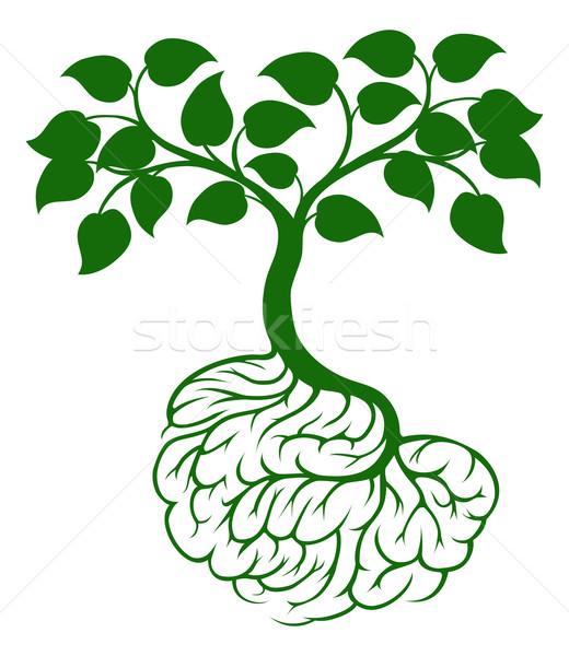 Stock photo: Brain roots tree