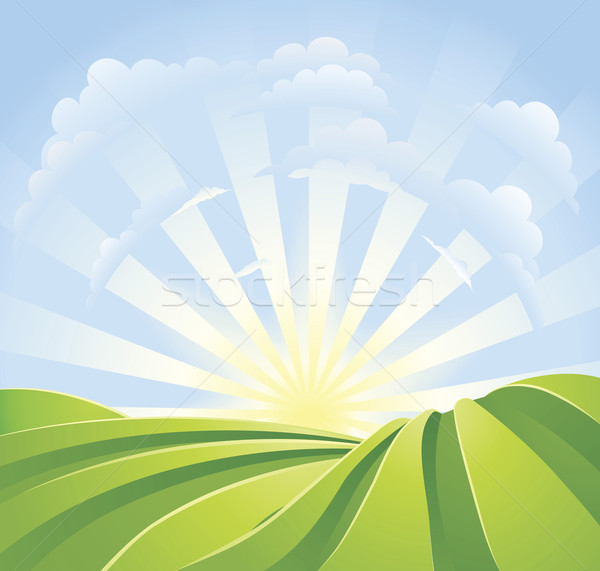 Stock photo: Idyllic green fields with sunshine rays and blue sky