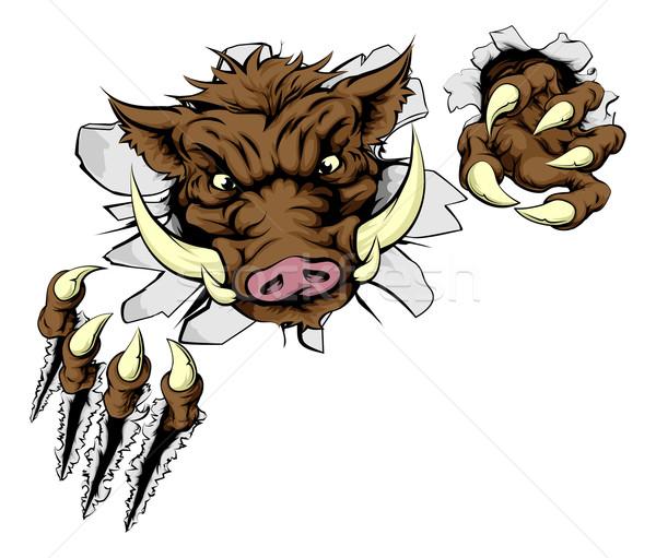 Boar sports mascot breaking wall Stock photo © Krisdog