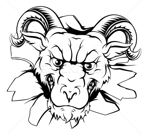 Baran maskotka przełom ilustracja twardy patrząc Zdjęcia stock © Krisdog