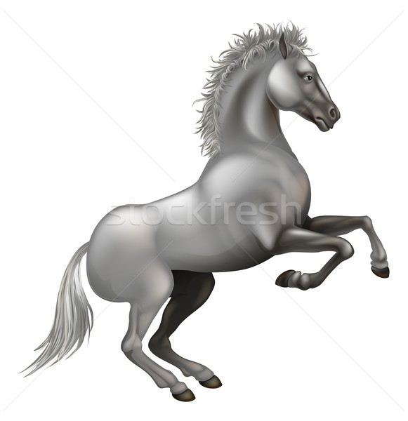Rearing white horse Stock photo © Krisdog