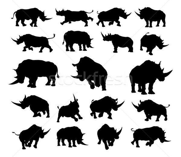 Rhino Animal Silhouettes Stock photo © Krisdog