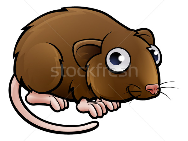 Bruin muis water huis baby Stockfoto © Krisdog